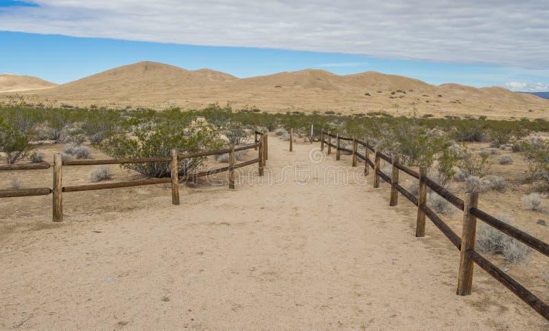 Dune di sabbia di Kelso nella prerogativa nazionale del Mojave fotografie stock