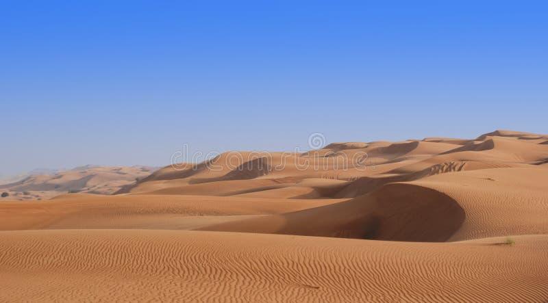 Dune di sabbia di rotolamento fotografie stock