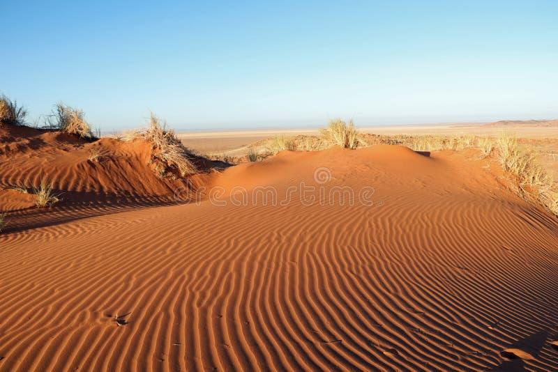 Dune di sabbia incredibili vicino a Sossusvlei e a Deadvlei nel deserto del de Namib fotografie stock libere da diritti
