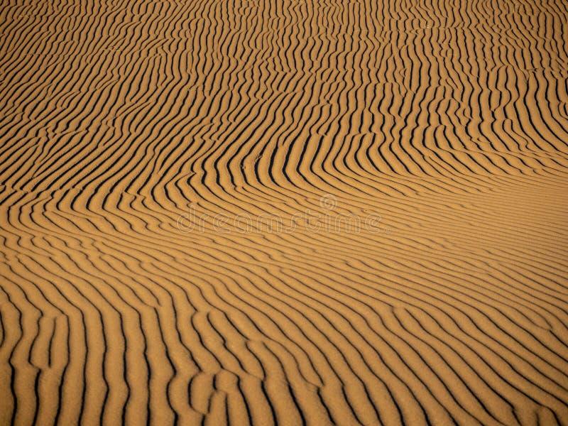 Dune di sabbia in Marocco, paesaggi deserti, trama di sabbia, campo turistico per un soggiorno notturno, panorama panorama del tr fotografia stock libera da diritti