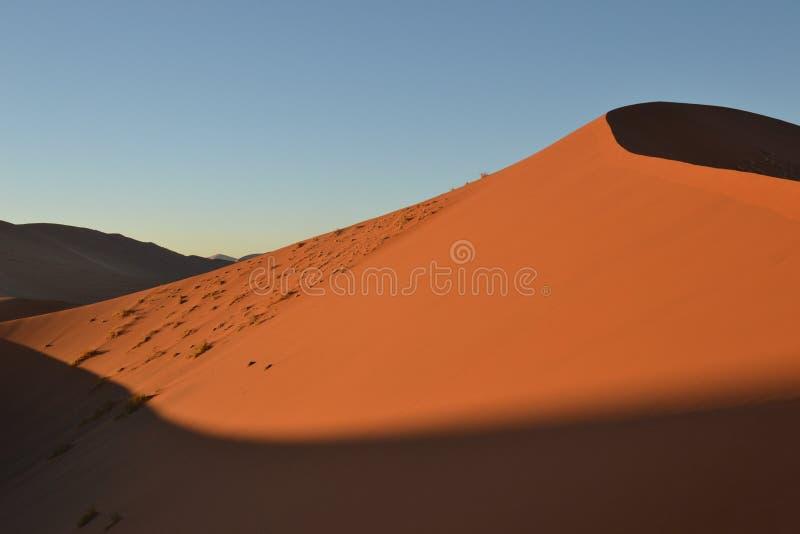 Dune di sabbia nel deserto di Namib fotografia stock libera da diritti