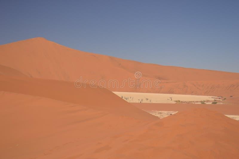 Dune di sabbia nel deserto di Namib immagine stock libera da diritti