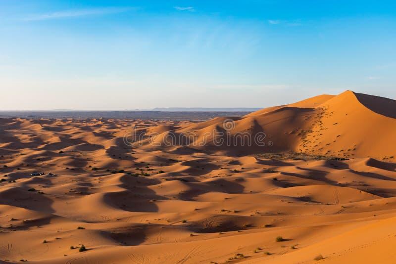 Dune di sabbia nel deserto di Sahara fotografia stock