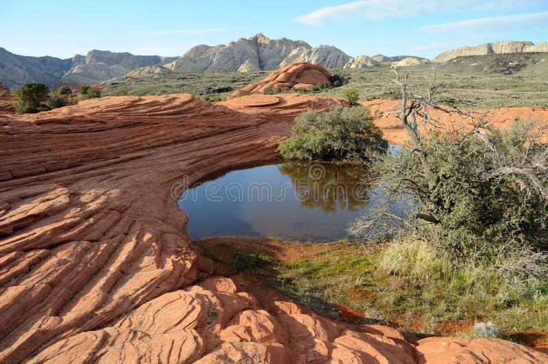 Dune di sabbia Petrified - sosta di condizione del canyon della neve in U fotografia stock