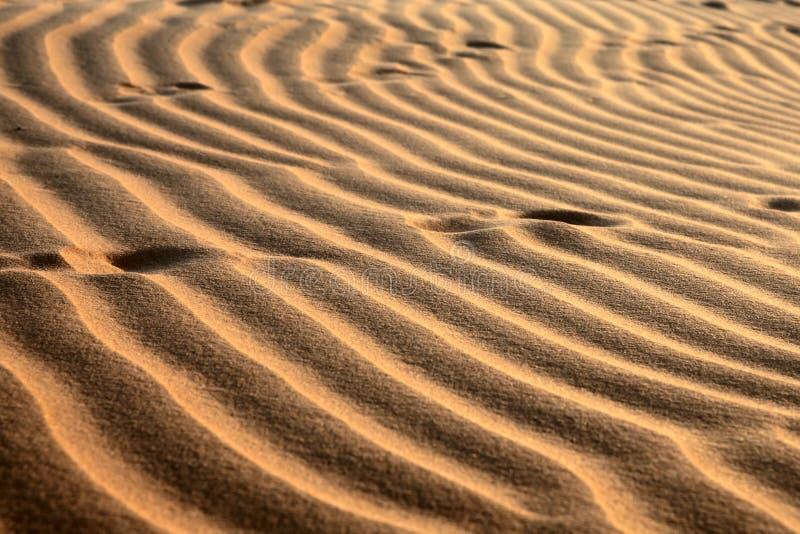 Dune di sabbia rosse. Reticolo immagine stock libera da diritti