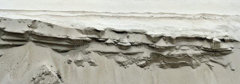 Dune di sabbia sull'oceano della spiaggia immagine stock libera da diritti