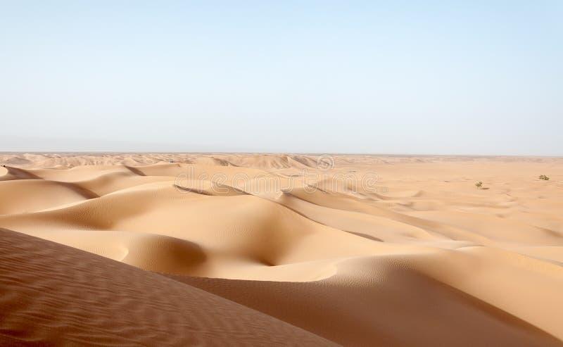 Dune di sabbia, valle di Draa (Marocco) immagine stock libera da diritti