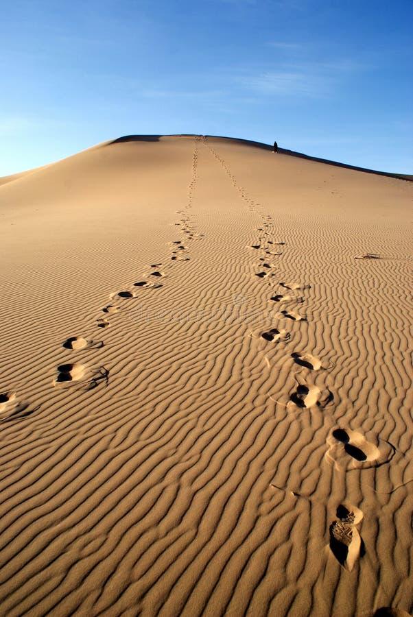 Dune di sabbie sul deserto di Gobi in Mongolia fotografie stock libere da diritti