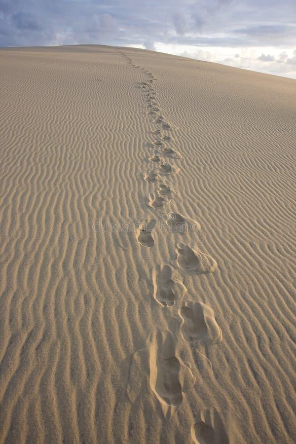 Dune du Pilat fotografia stock