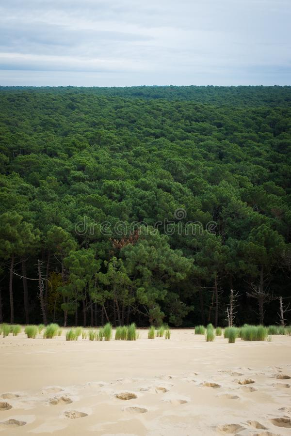 Dune du Pilat imagen de archivo libre de regalías