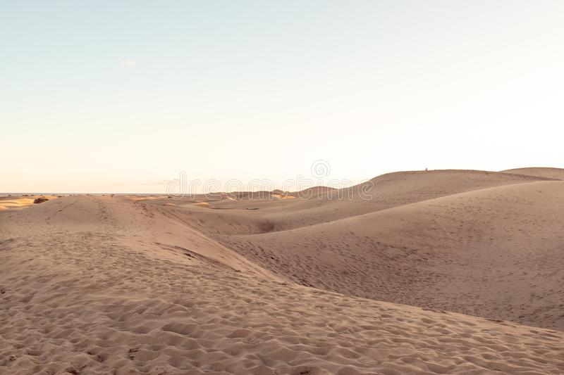 Dune landscape in the desert royalty free stock photography