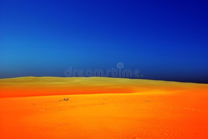 Dune, Leba, Poland, Europe stock image