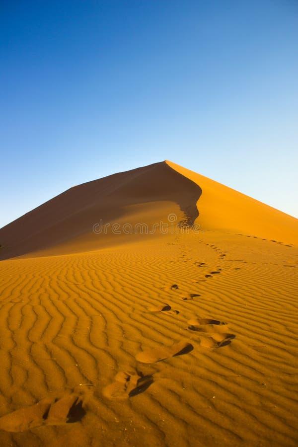 Dune 45 royalty free stock image