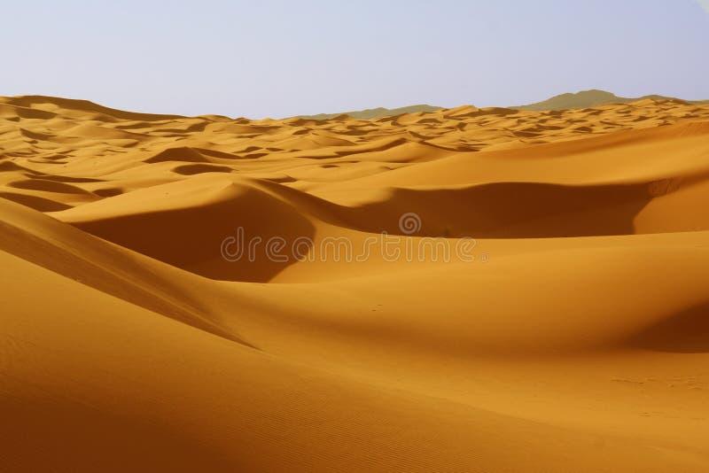 Dune nel deserto di Sahara fotografia stock libera da diritti