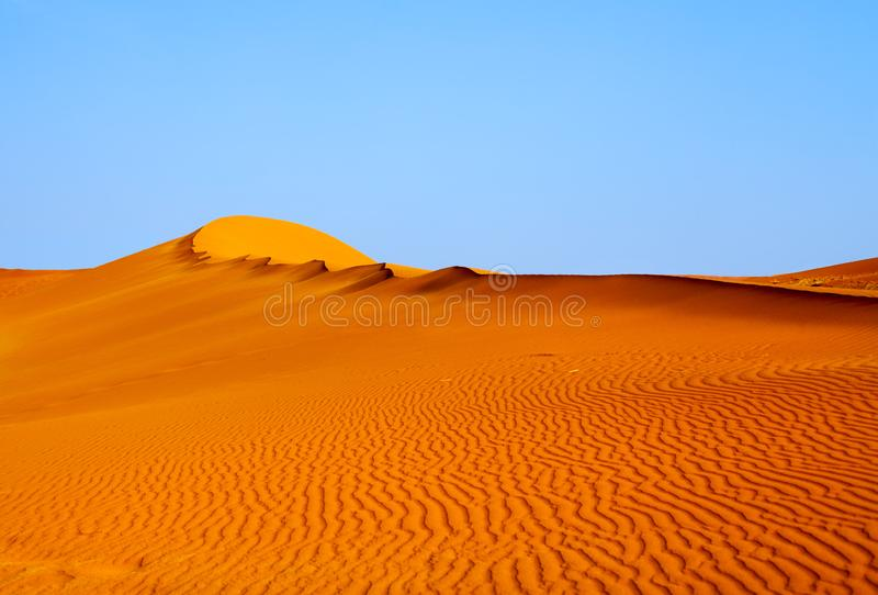 Dune orange de Sandy sous le ciel clair bleu en parc Sossusvlei, Namibie, Afrique du Sud de Naukluft de désert de Namib photos libres de droits
