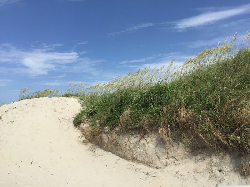 Dune på en strand i North Carolina med blå himmel och gräs royaltyfri foto