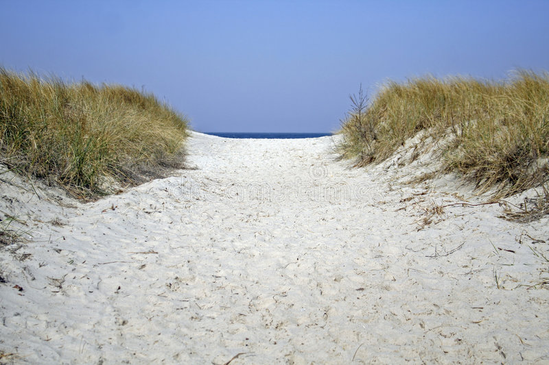 Dune pathway. Pathway in dune with sea on horizon stock photography