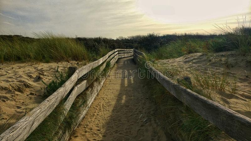 The Dune Pathway. A pathway, dug through the dunes. The sunset tints the sand yellow and the breeze ruffles the stock photo