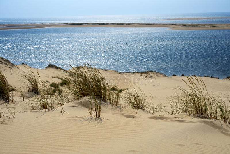 Dune of Pilat, France royalty free stock images