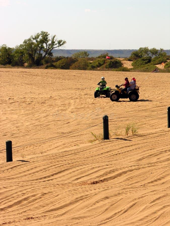 Download Dune Racing Family stock image. Image of racing, scenic - 307571