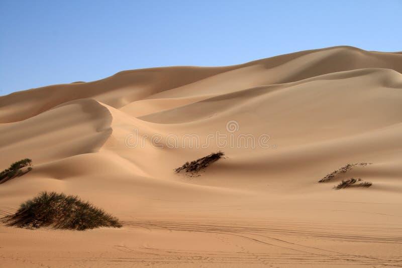Dune of the Sahara desert royalty free stock photography