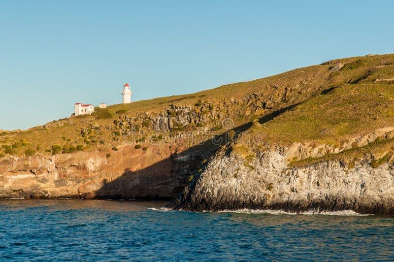 Dunedin - latarnia morska obraz royalty free