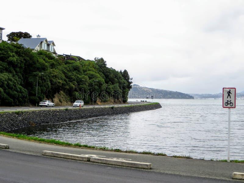 Dunedin, península de Otago, Nueva Zelanda - 5 de febrero de 2016: Wi foto de archivo