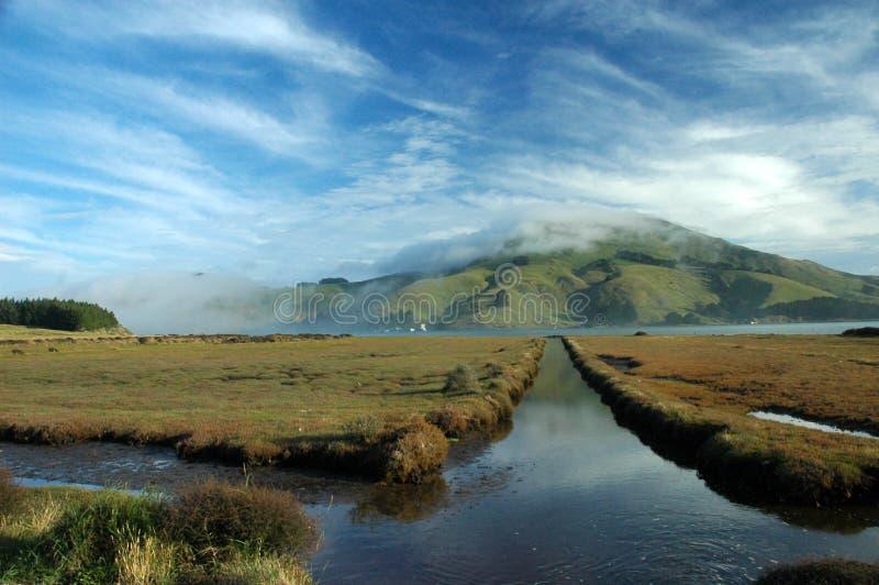 Download Dunedin Peninsula, New Zealand Stock Image - Image: 6927071