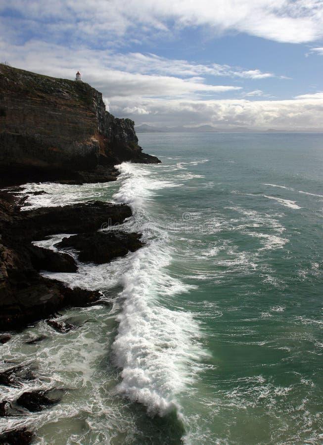 Download Dunedin-Punkt, Neuseeland stockbild. Bild von scheitel, grün - 47801