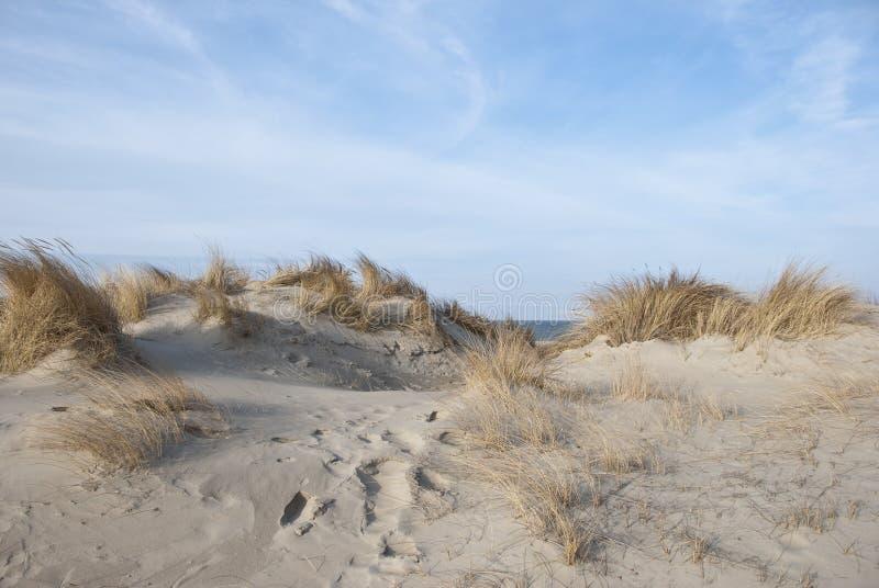 Dunes images libres de droits