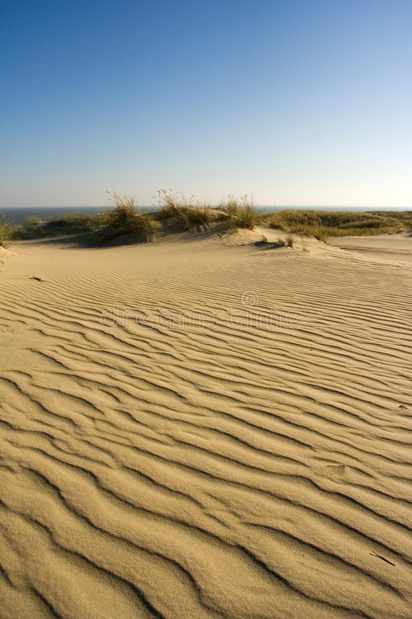 Dunes photos stock