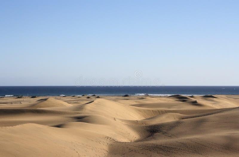 Dunes with atlantic ocean. On horizon with blue sky. Gran Canaria royalty free stock photos