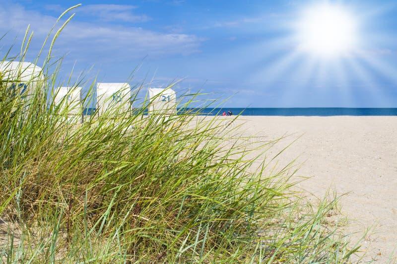 Dunes avec la plage à la mer baltique allemande photographie stock libre de droits
