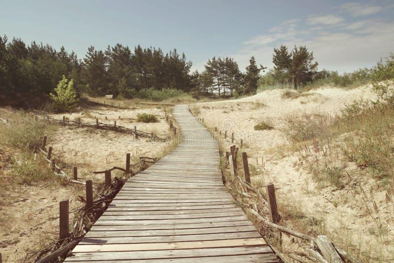 Dunes avec le passage couvert en bois au-dessus du sable près de la mer baltique photographie stock libre de droits
