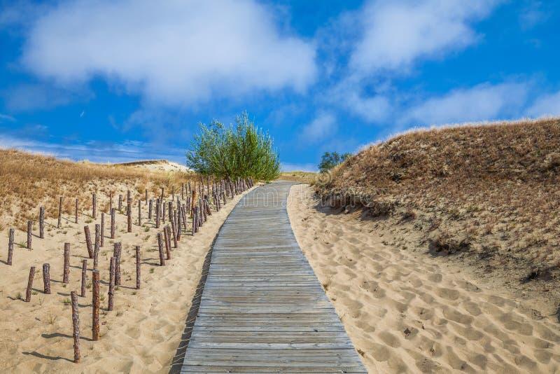 Dunes avec le passage couvert en bois au-dessus du sable près de la mer baltique Embarquez la manière au-dessus du sable des dune image stock