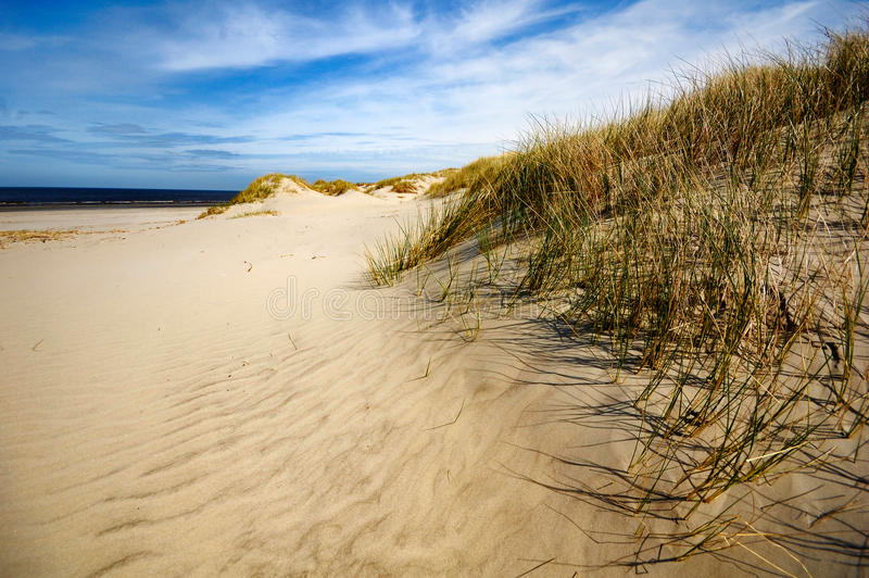 Download Dunes, Beach And Coast At Ameland, The Netherlands Stock Photo - Image of ameland, clouds: 13438404