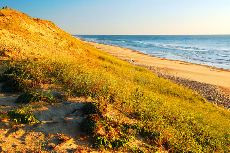 Dunes of Cape Cod. The grassy dunes of Cape Cod provides miles of shoreline for beach goers and protects the homes from sea surges royalty free stock photography