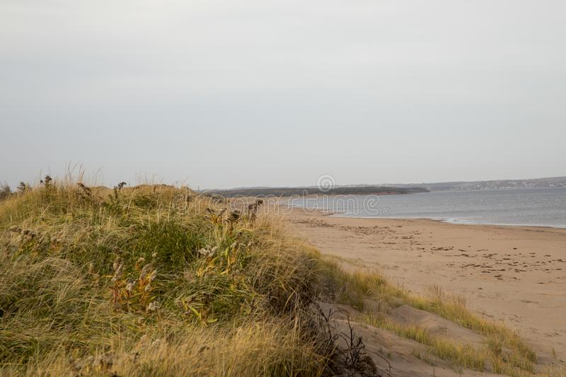 Empty dunes on coast of Prince Edward Island royalty free stock photography