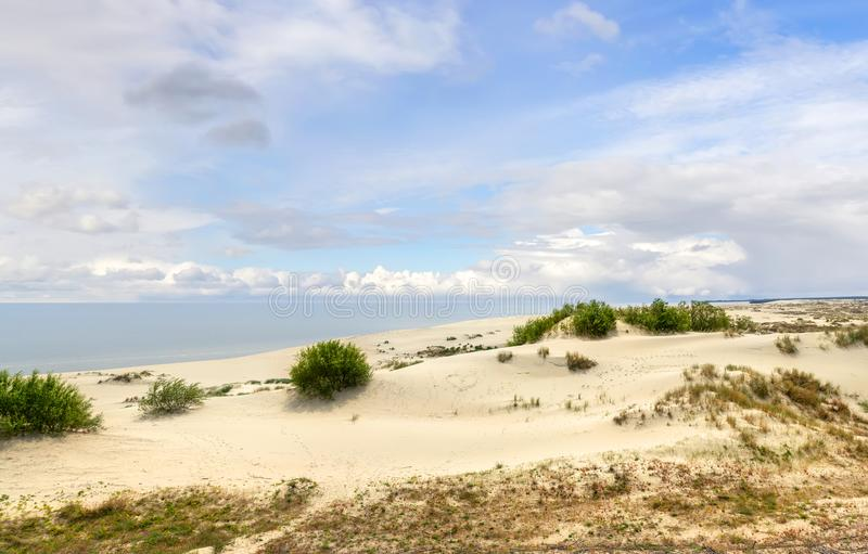 Dunes of the Curonian Spit. Kaliningrad. Russia. Sand dunes of the russian part Curonian Spit. Kaliningrad region, Russia stock photo