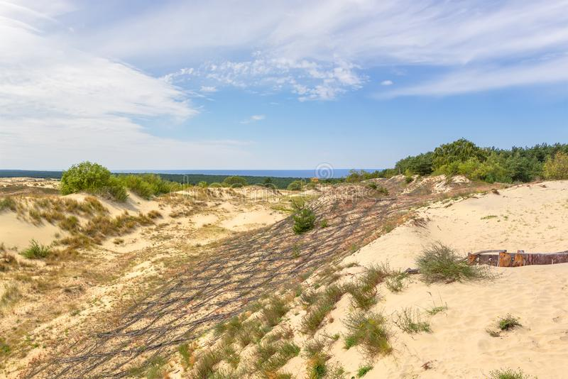 Dunes of the Curonian Spit. Kaliningrad. Russia. Sand dunes of the russian part Curonian Spit. Kaliningrad region, Russia stock image