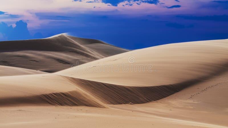 Dunes dans le coucher du soleil images libres de droits