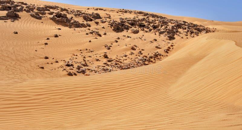 Dunes dans le désert images stock