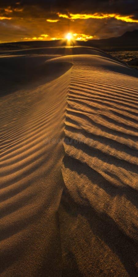 Dunes dans le désert du Nevada au coucher du soleil photos stock