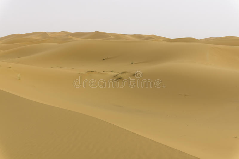 Dunes dans le désert du Sahara photographie stock