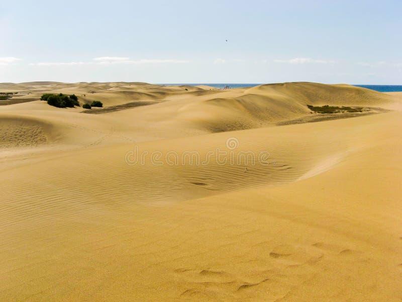 Dunes dans Maspalomas image libre de droits