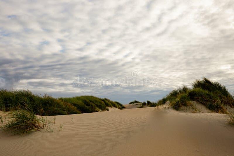 Dunes dans Westland photos stock