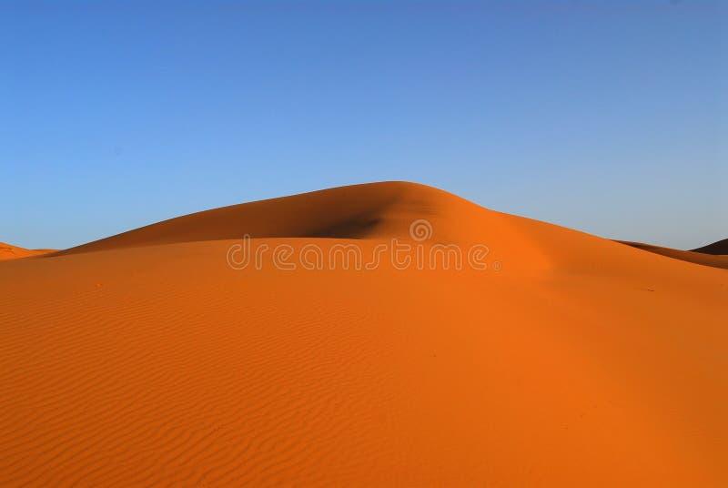 Dunes de désert du Sahara image stock