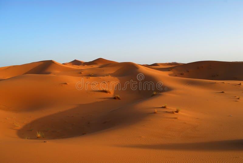 Dunes de désert du Sahara image libre de droits
