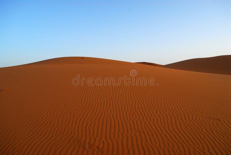 Dunes de désert du Sahara photographie stock libre de droits