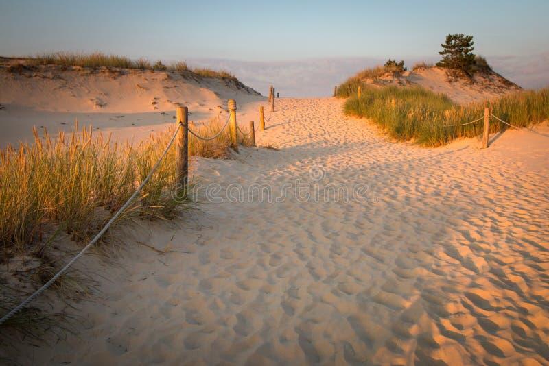 Dunes de la Pologne dans Czolpino photo libre de droits